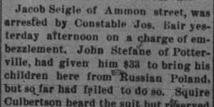 The Homestead News, 3/1/1895