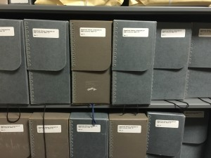 Some of the boxes of Homestead material in the Rauh Jewish Archives (March 2015).